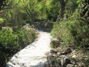 CC-Khunja-Sampark-Marg-Budogi-