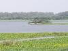 bhindawas-lake-3